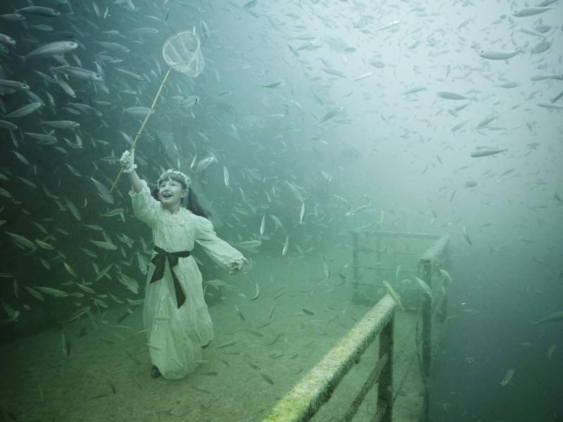 Andreas Franke Underwater Exhibition