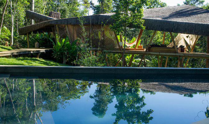 Modern Tree House Bahia