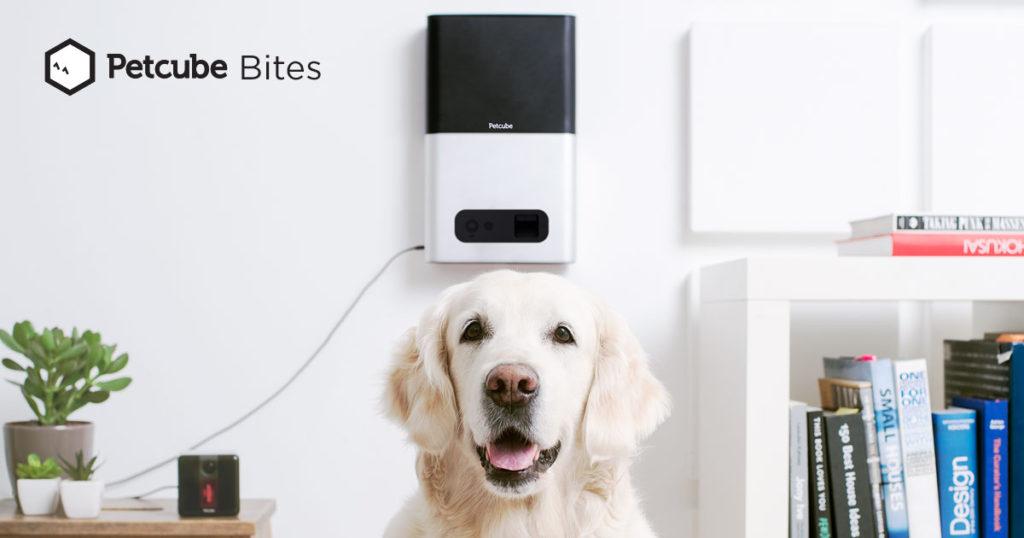 Petcube_Pet-Camera